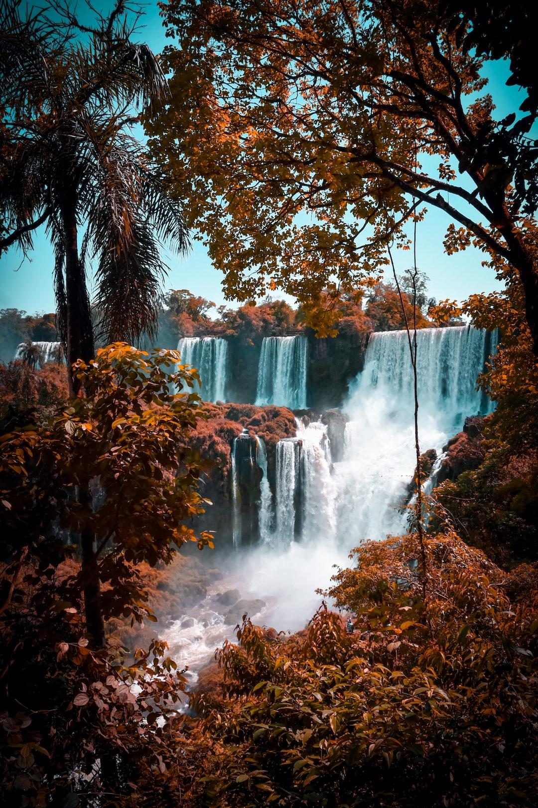 Green Trees Near Waterfalls Photo