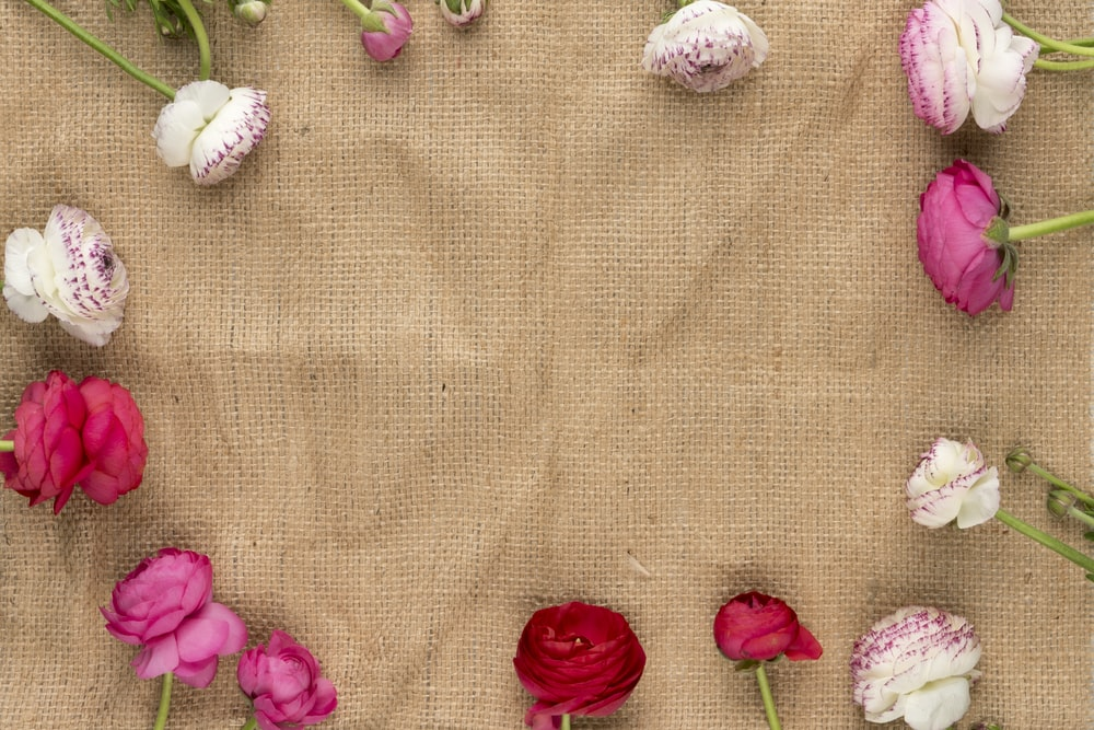 white and pink flowers on brown textile