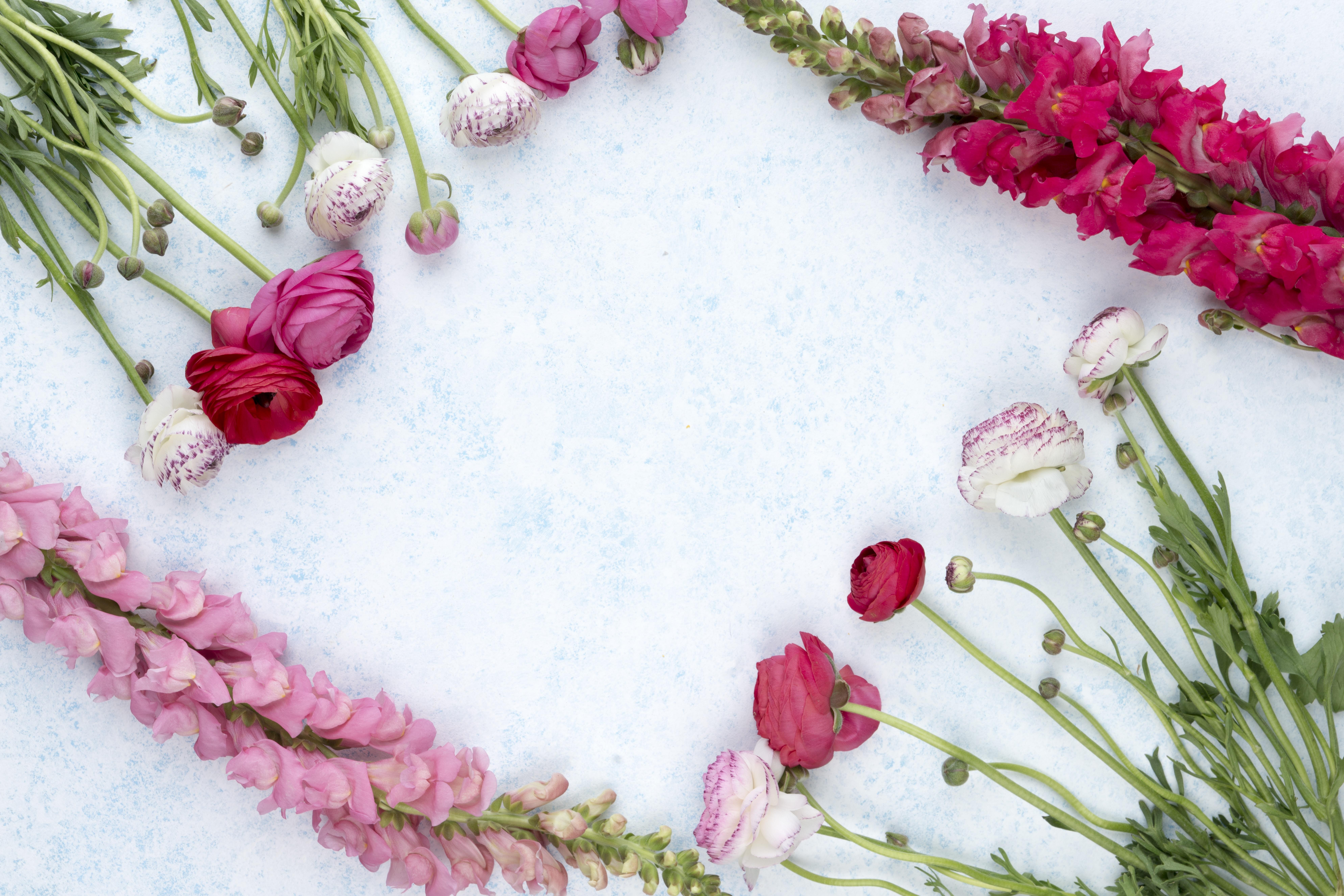 Flowers flowers stories