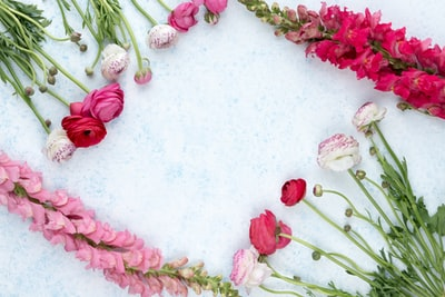 assorted-color flowers layed on white concrete surface