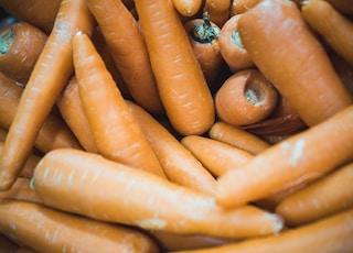 closeup photo of carrot lot