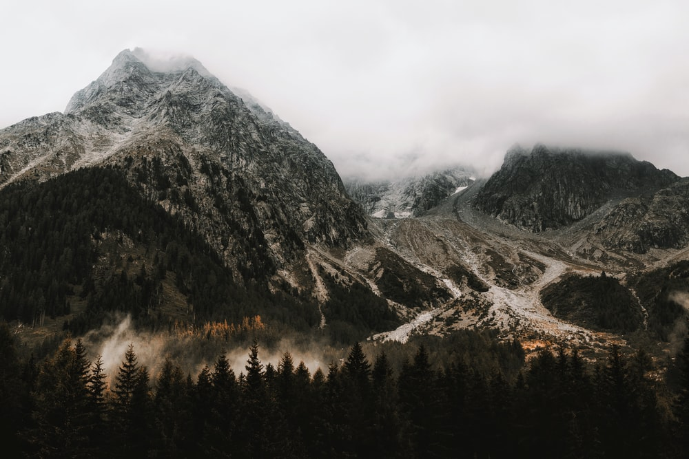 aerial photography of mountains covered with white fog