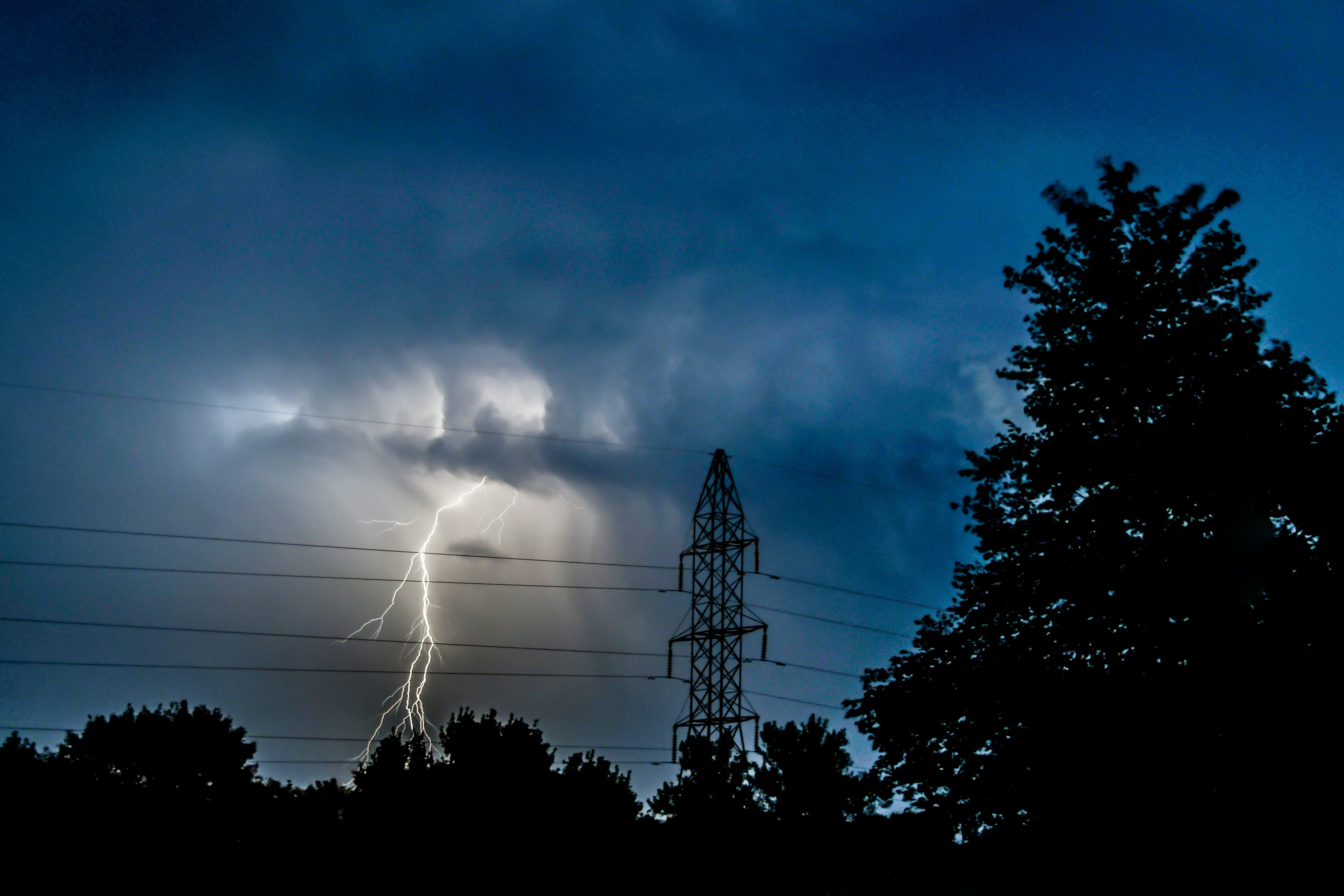 silhouette photo of trees near electric tower under lightning