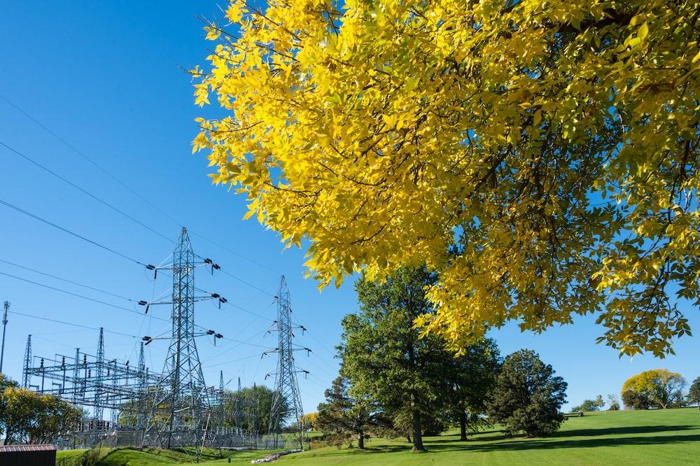gray utility tower near trees