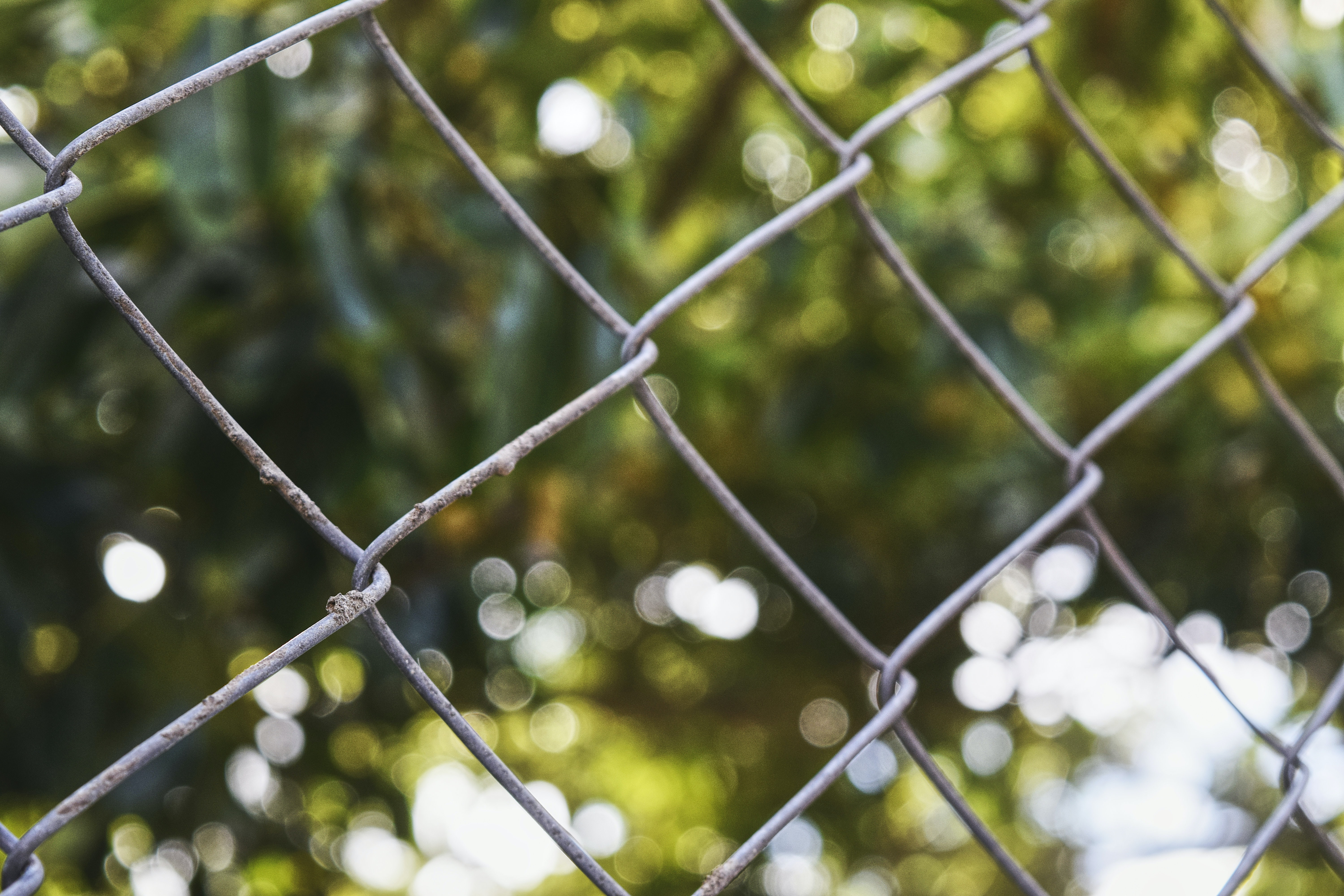 shallow focus photography of cyclone wire