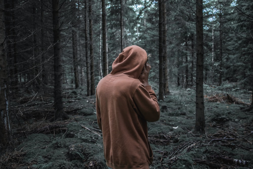 person standing in front of trees