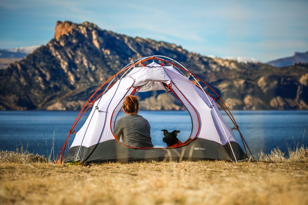 woman and a dog inside outdoor tent near body of water