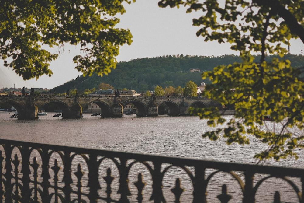 Charles Bridge in Prague during daytime