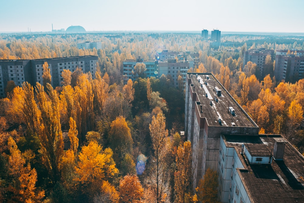 birds eye view of chernobyl buildings surrounded with trees