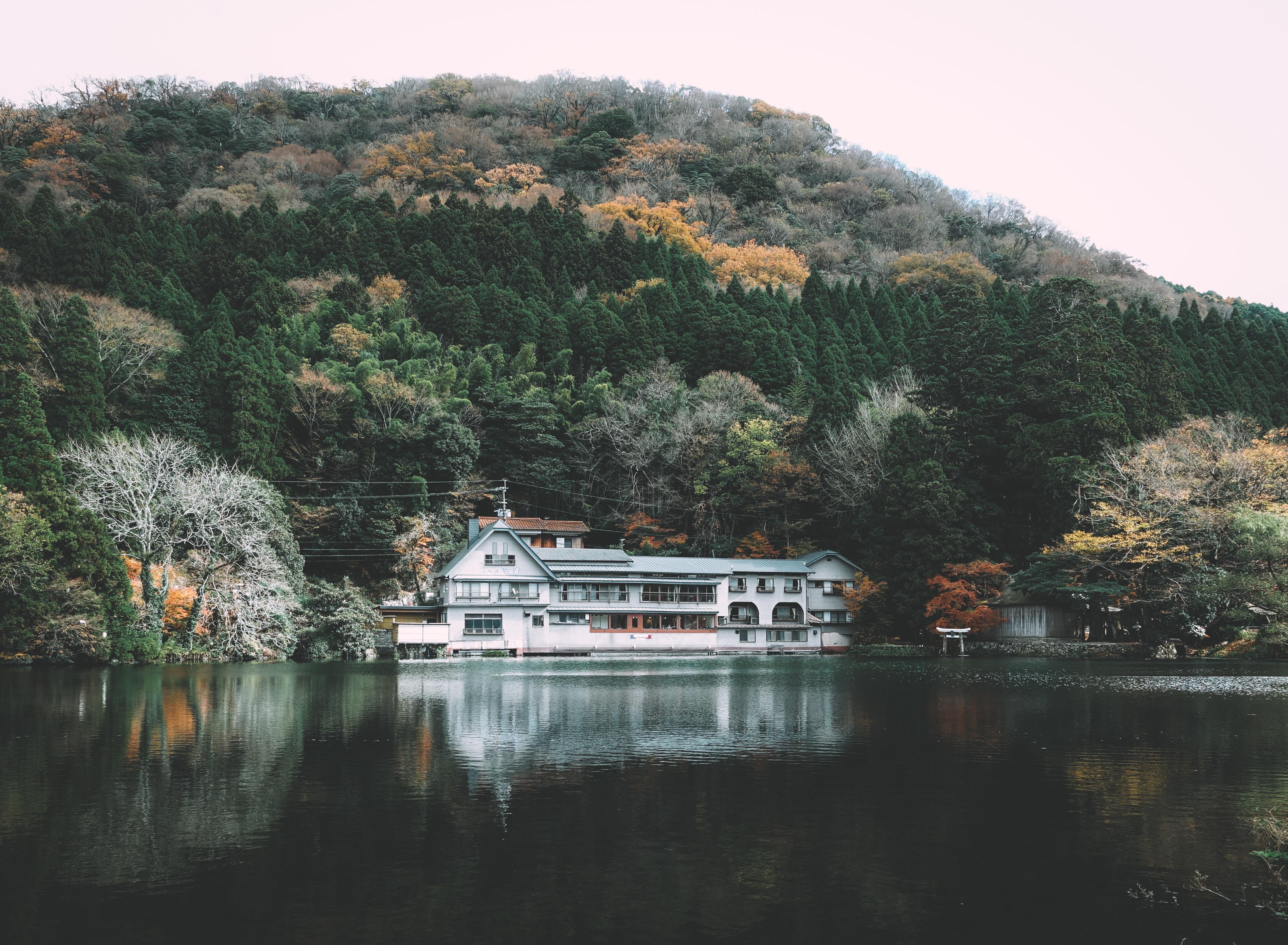 house beside body of water