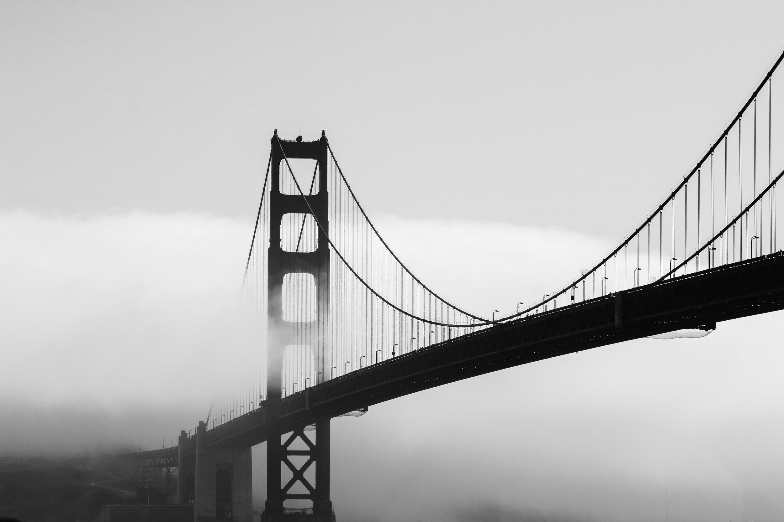 silhouette of bridge covered by mist