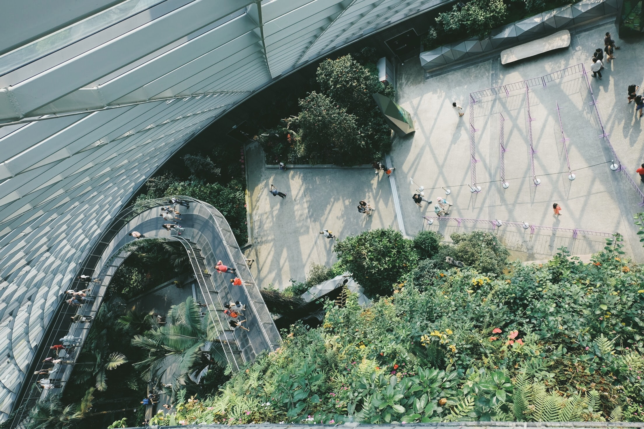 aerial view of people walking towards the building