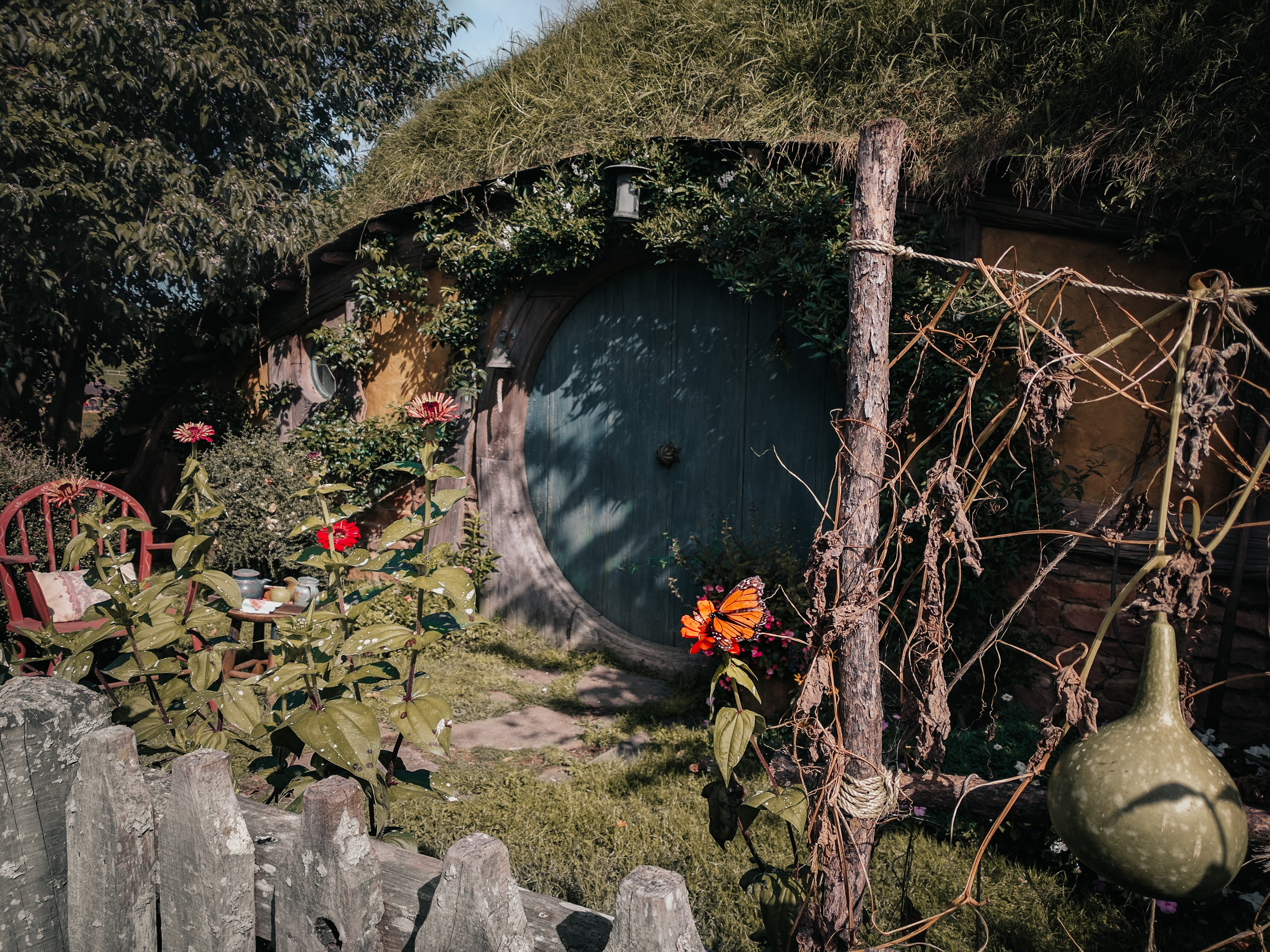 photo of Hobbit house