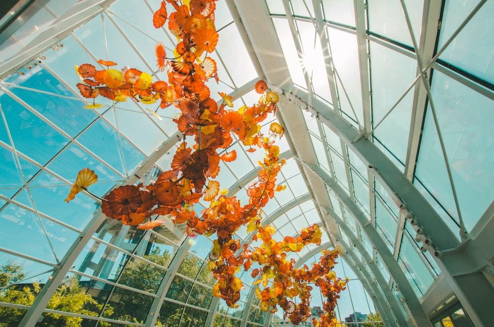 plants inside glass dome