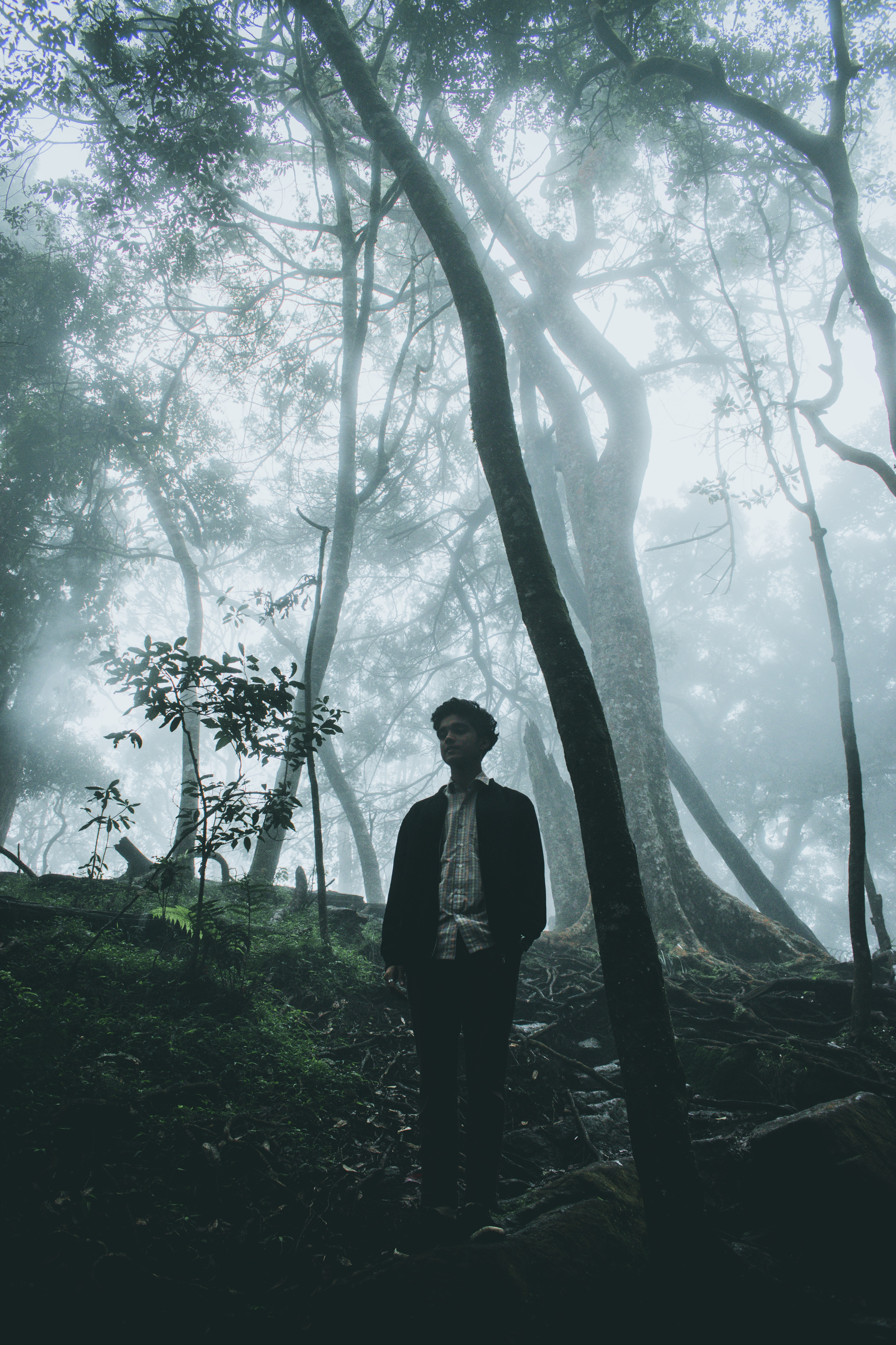men standing on foggy forest at daytime