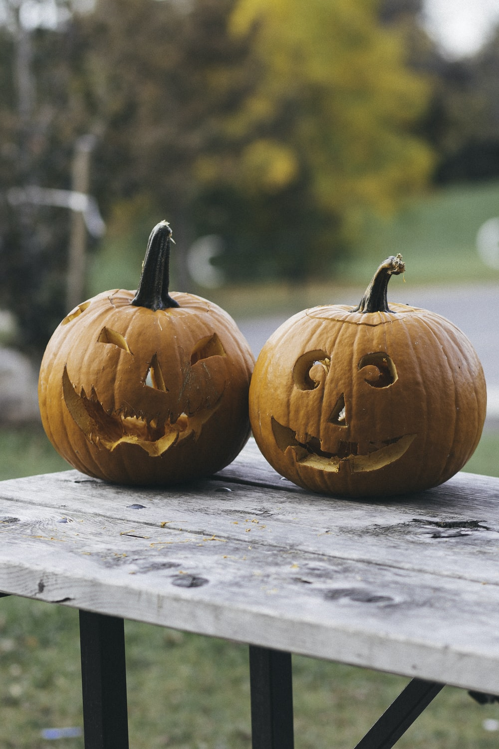 two pumpkins on brown wooden table