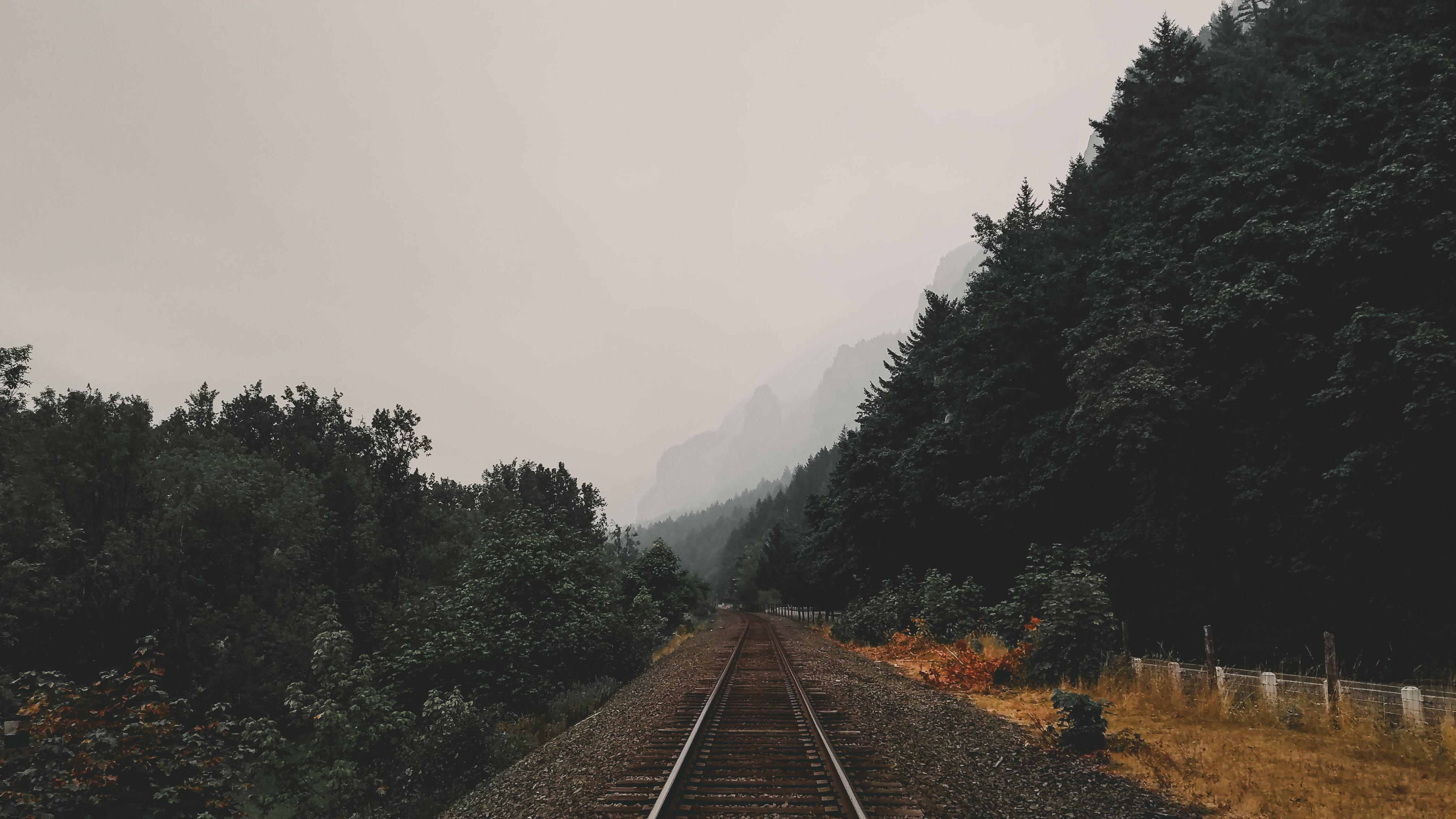 train rails between green trees under cloudy sky