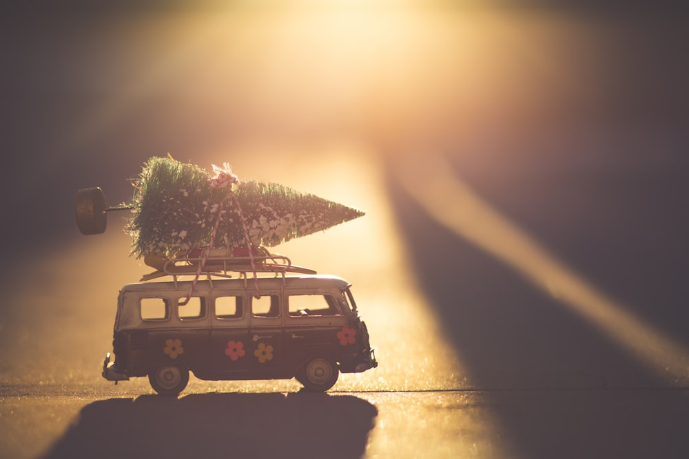 white and black bus with green pine tree scale model