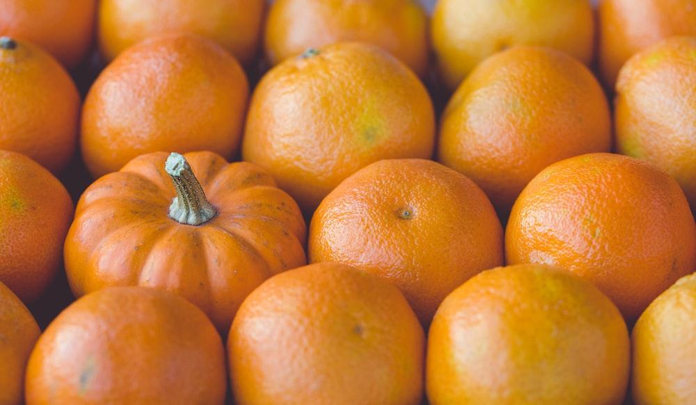 orange squash in the middle of orange mandarin fruits