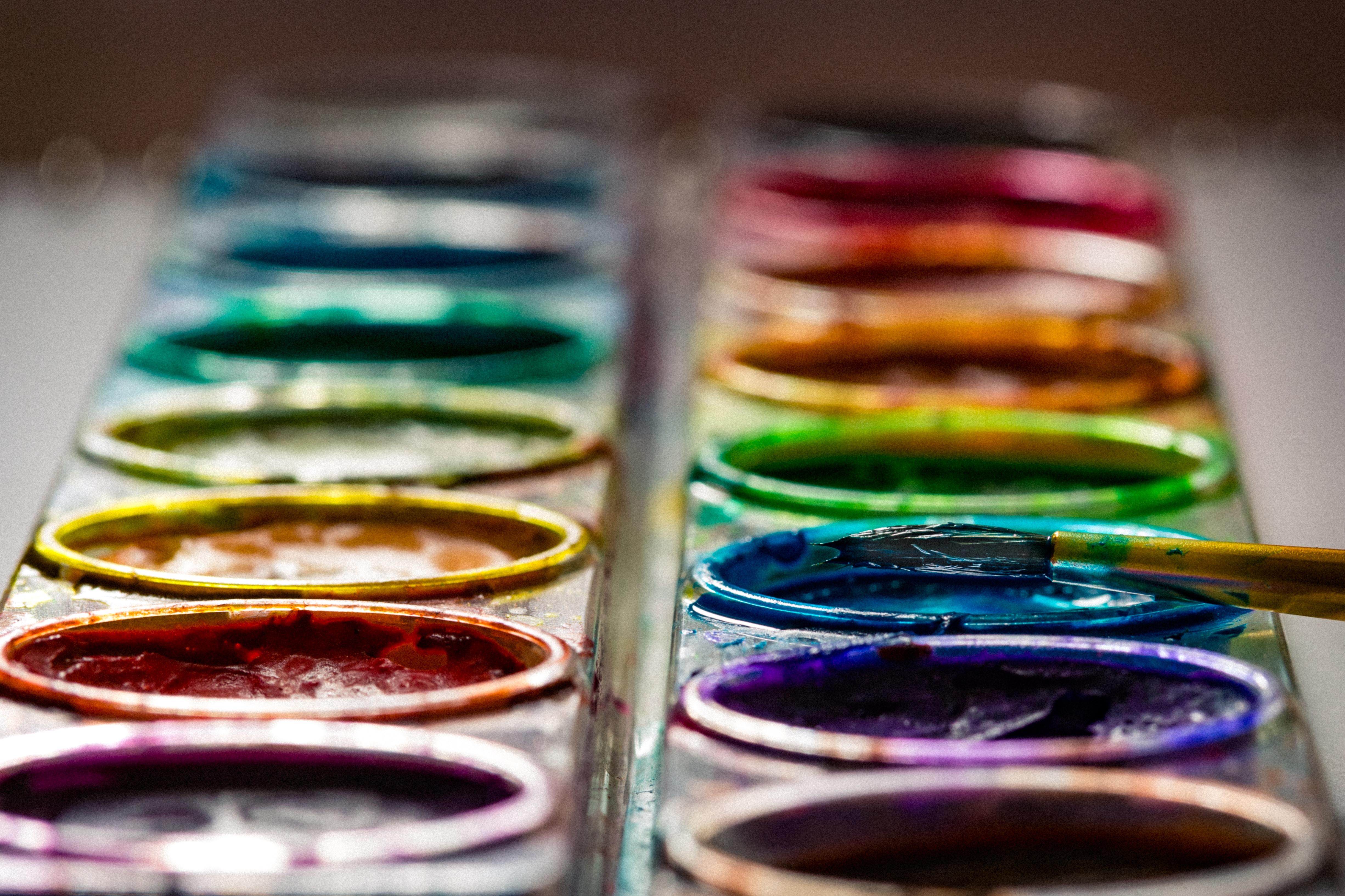 two paint brush palette