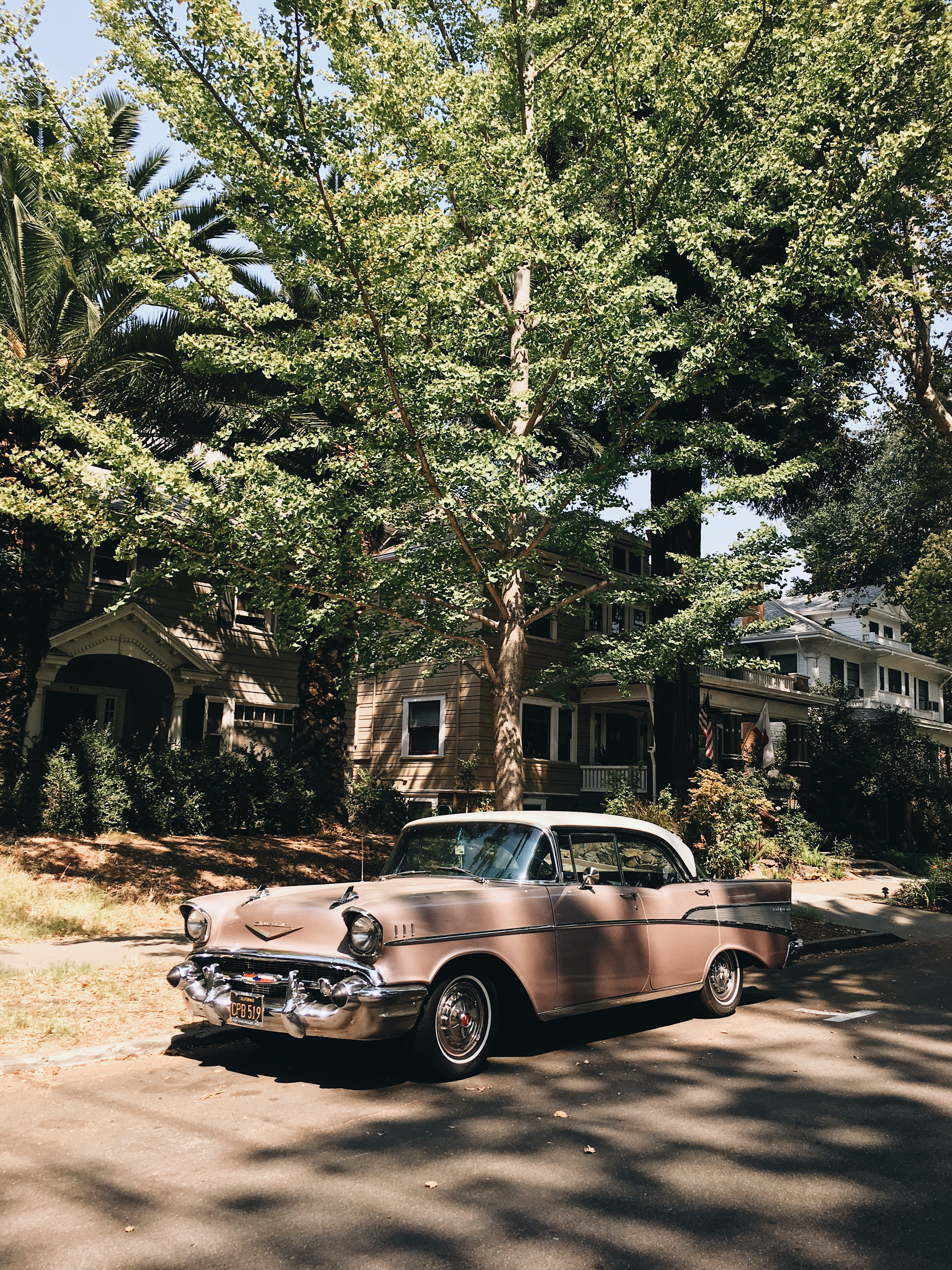 vintage pink sedan parked in front of tree