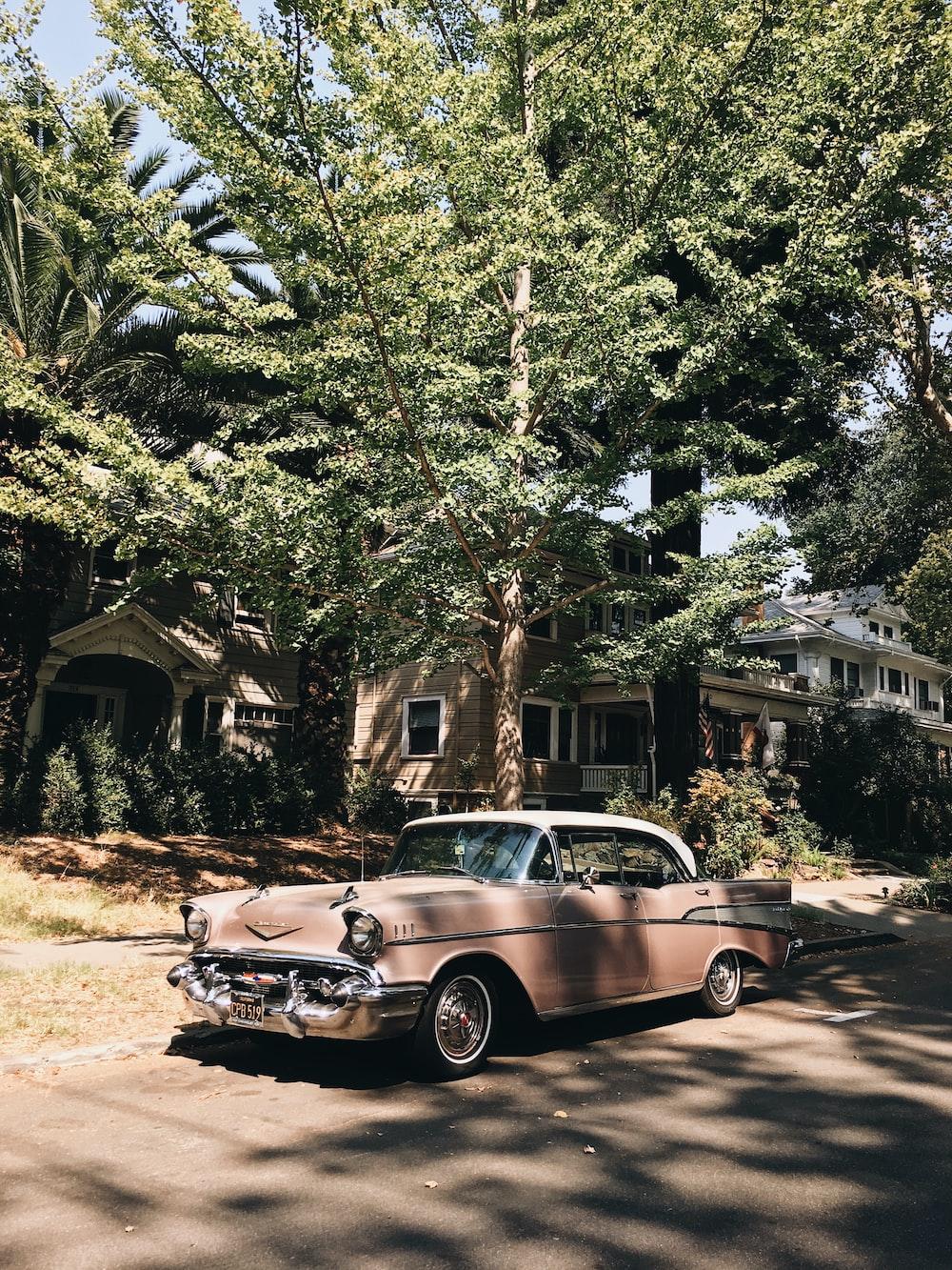 vintage pink sedan parked in front of tree