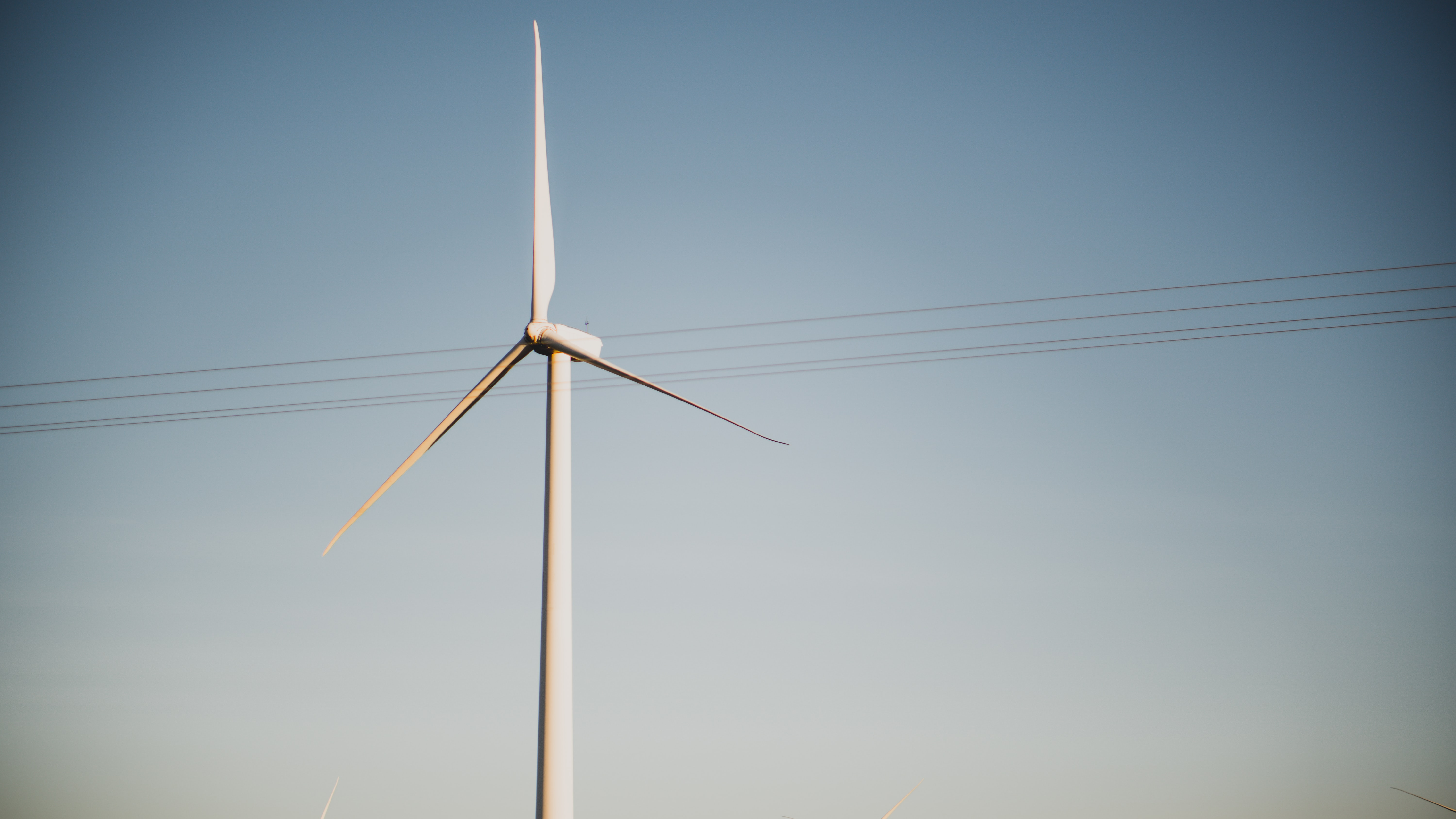 shallow focus of windmill
