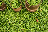 Green Chili - Creole Food Market on Reunion Island