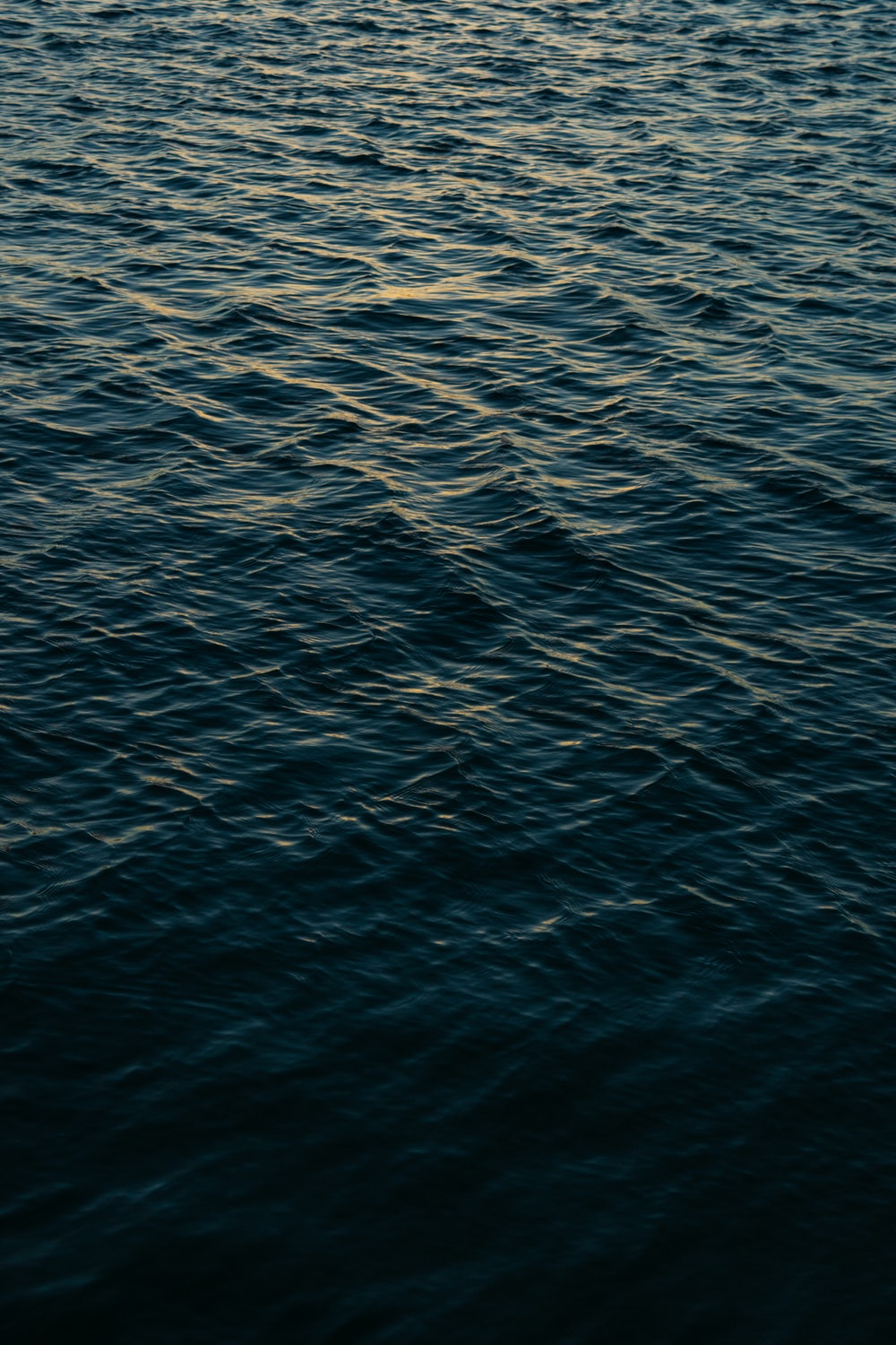 blue water pictures hd download free images on unsplash