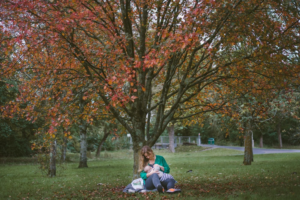 woman holding baby sitting under the tree