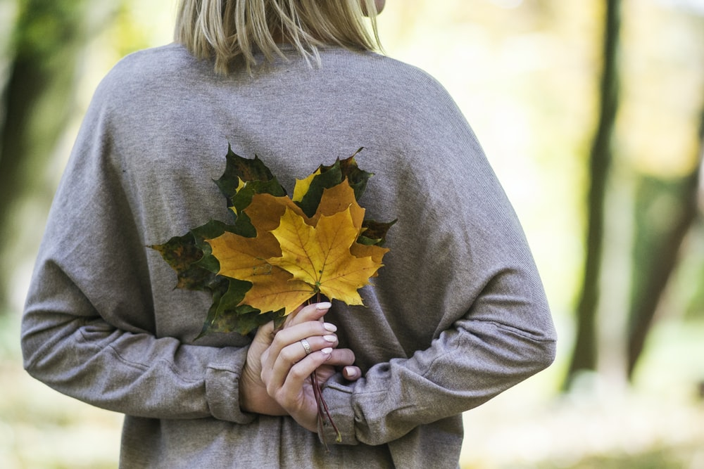 woman holding yellow and gray leaves during daytime