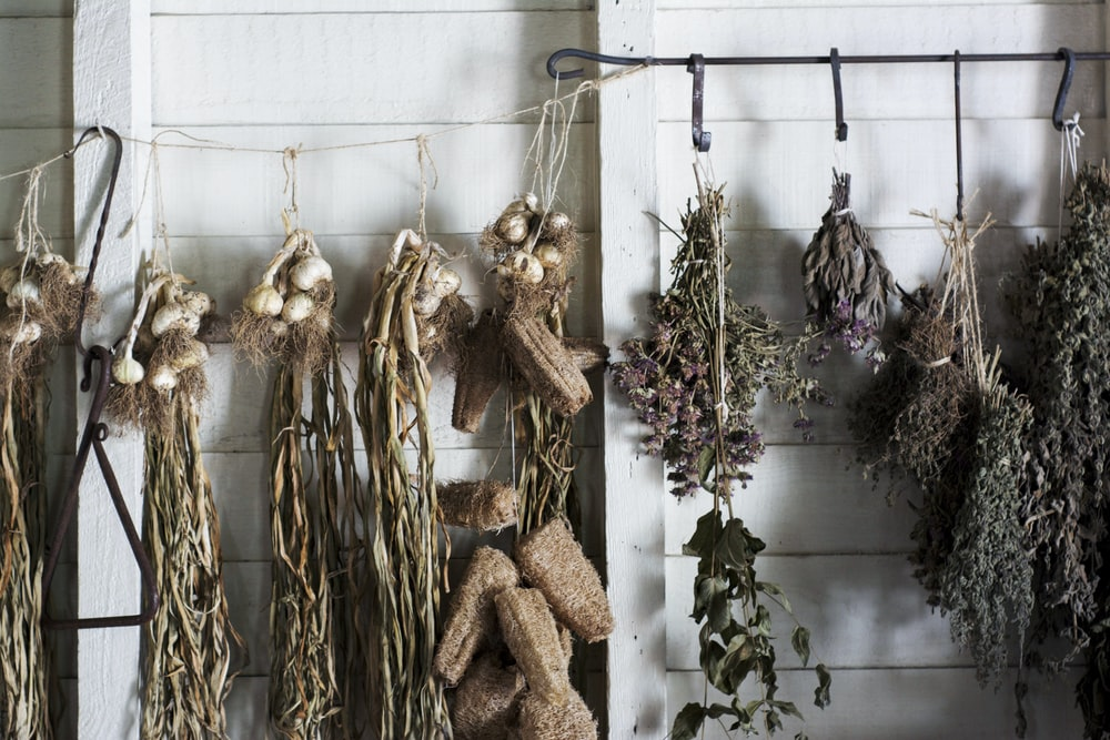 assorted plants hanging on white and black metal hook