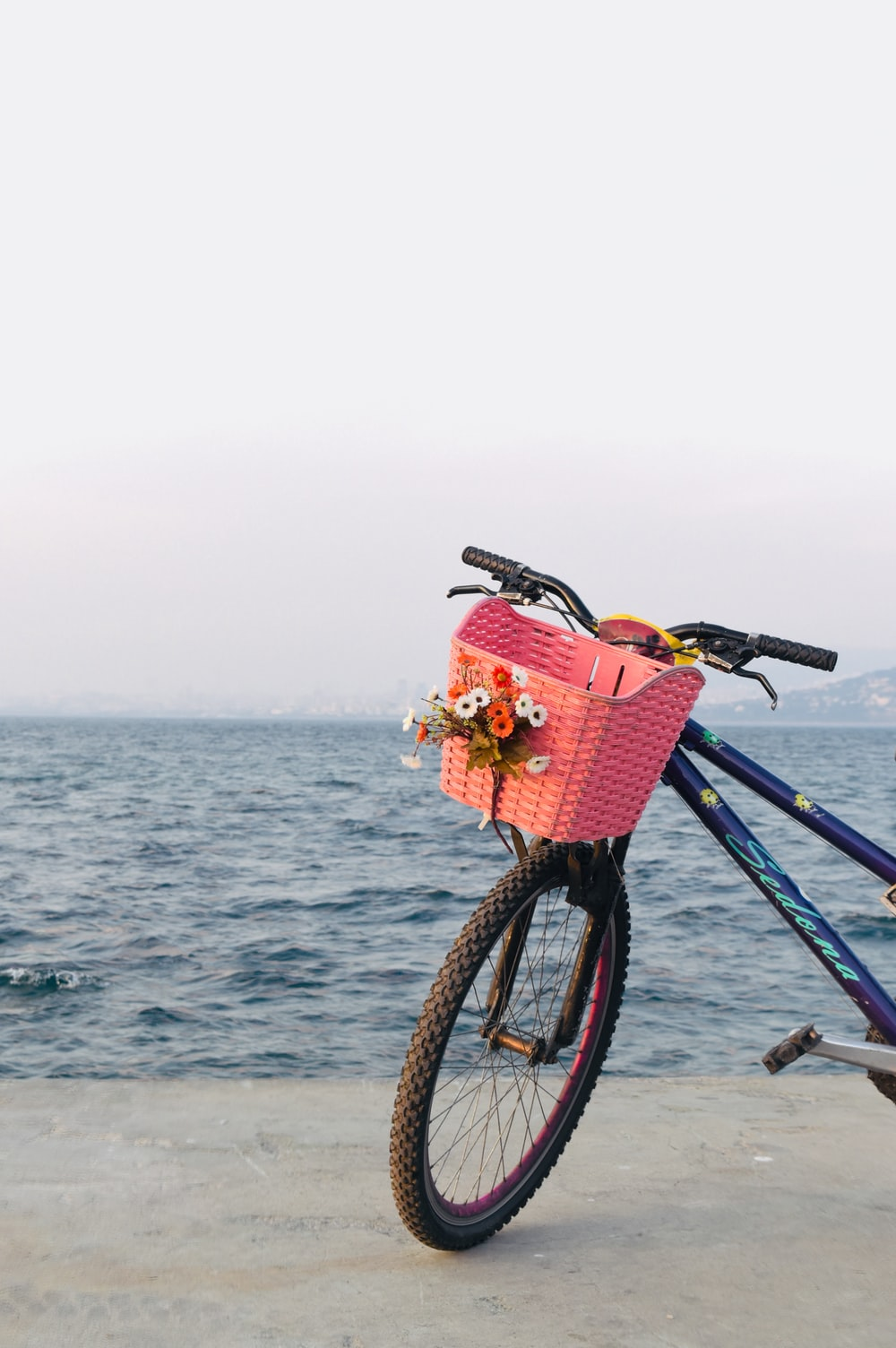 black and blue bicycle with basket