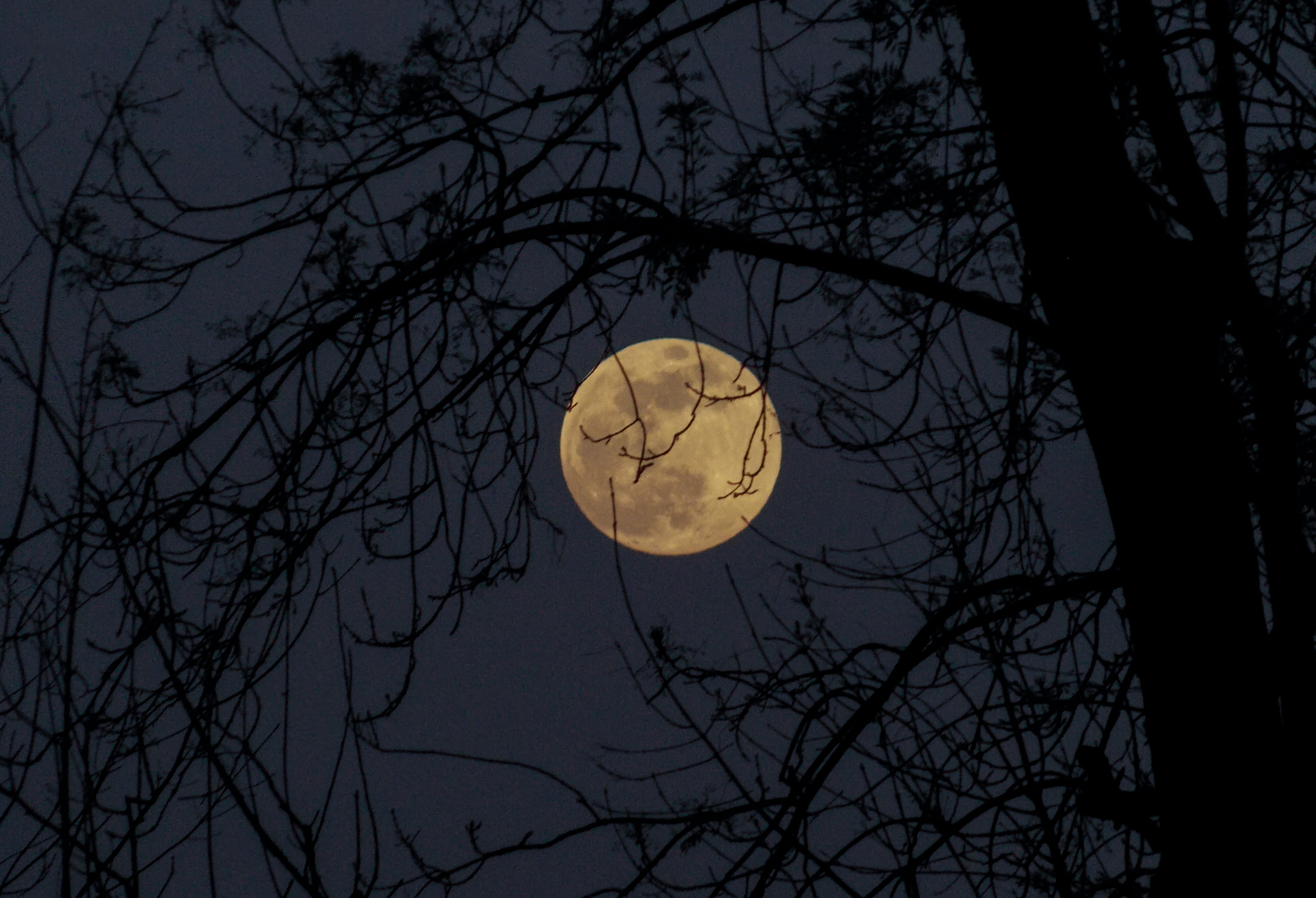 selective color photography of full moon