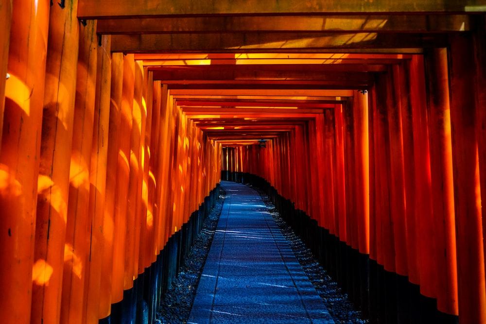 orange wooden tunnel