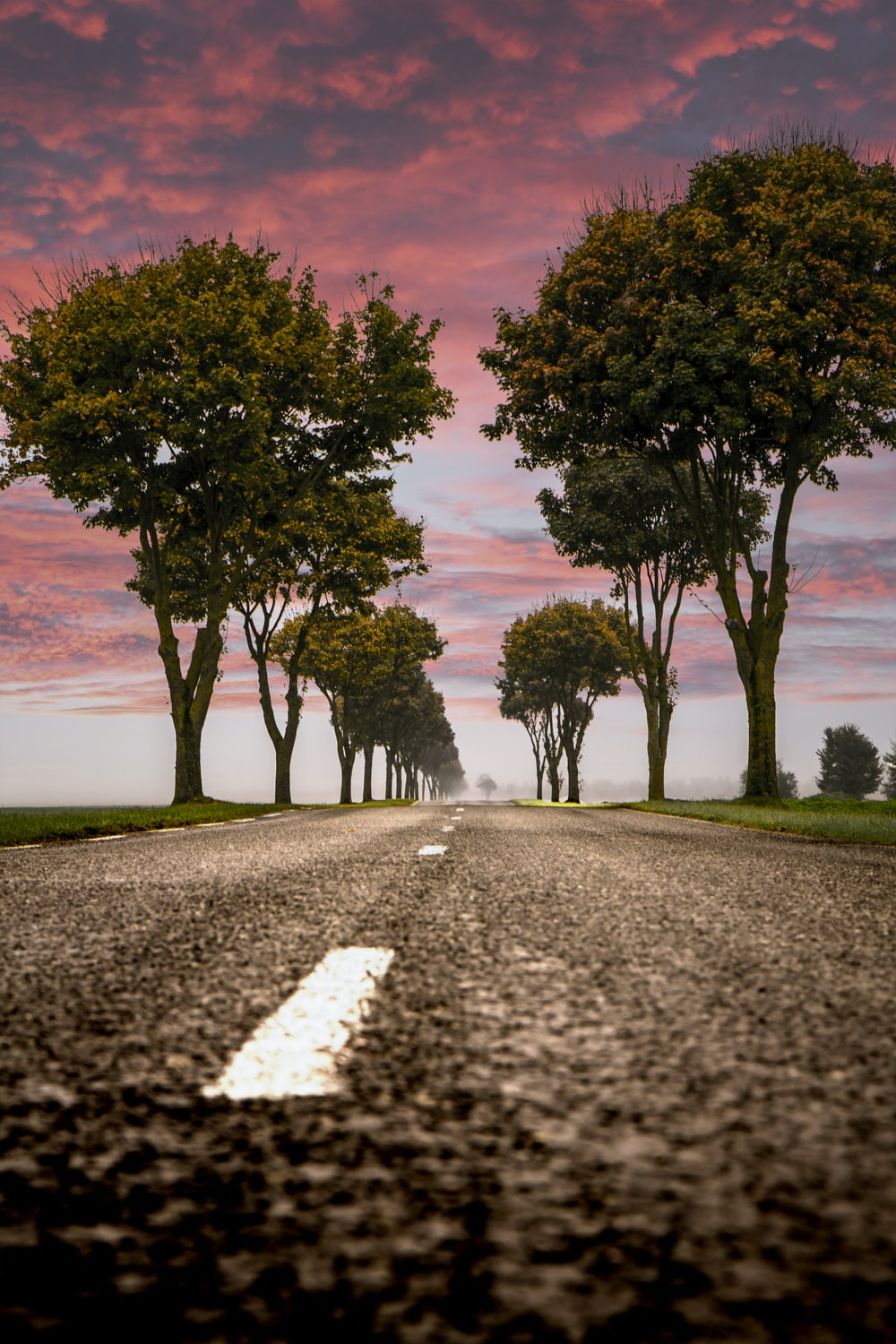 low angle photography of asphalt road