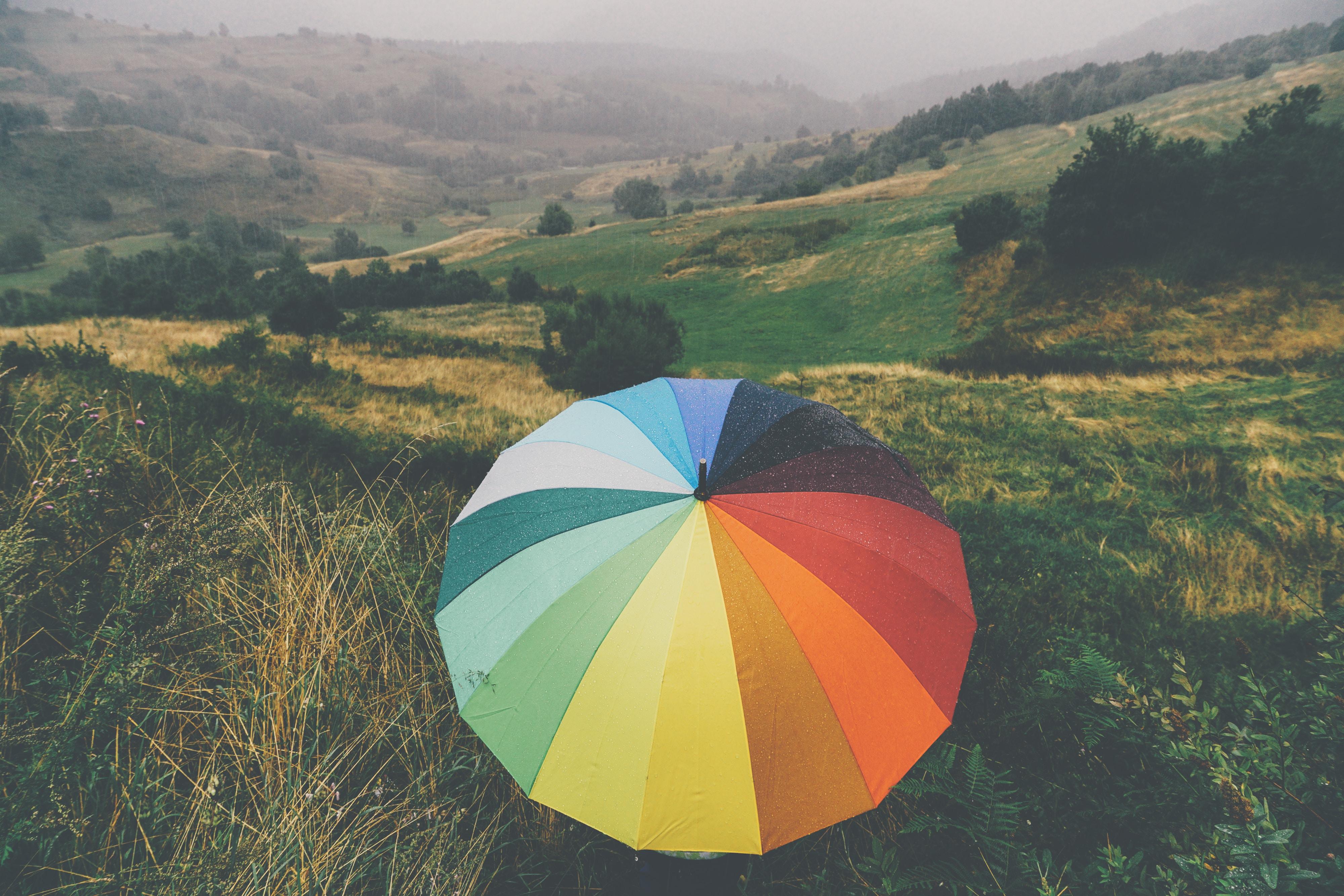 umbrella near trees