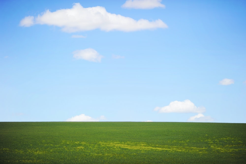 landscape photography of green field and sky