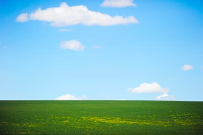 landscape photography of green field and sky leisure activity teams background