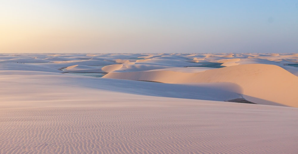 field of white sand