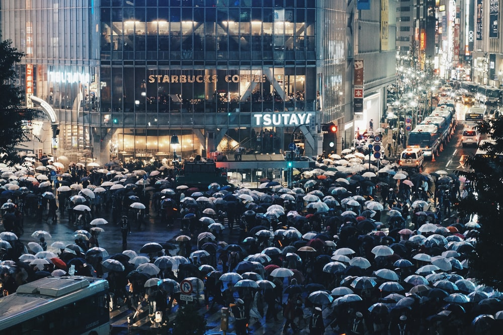 people carrying umbrella