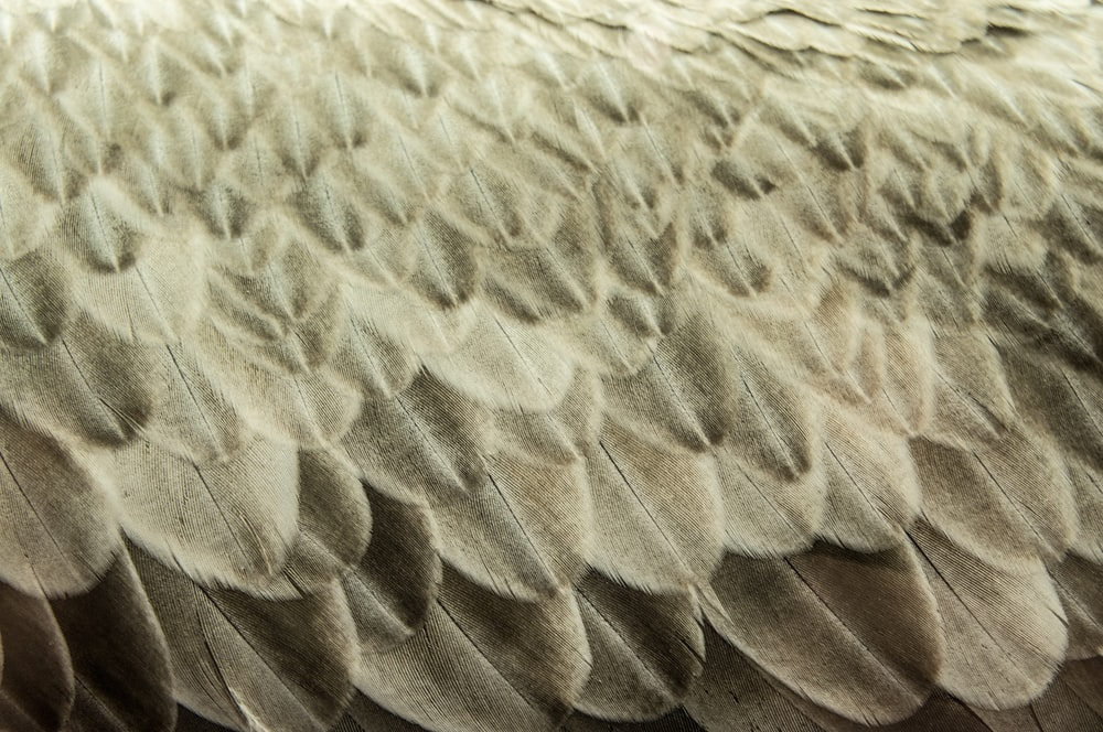 close up photo of gray cloth