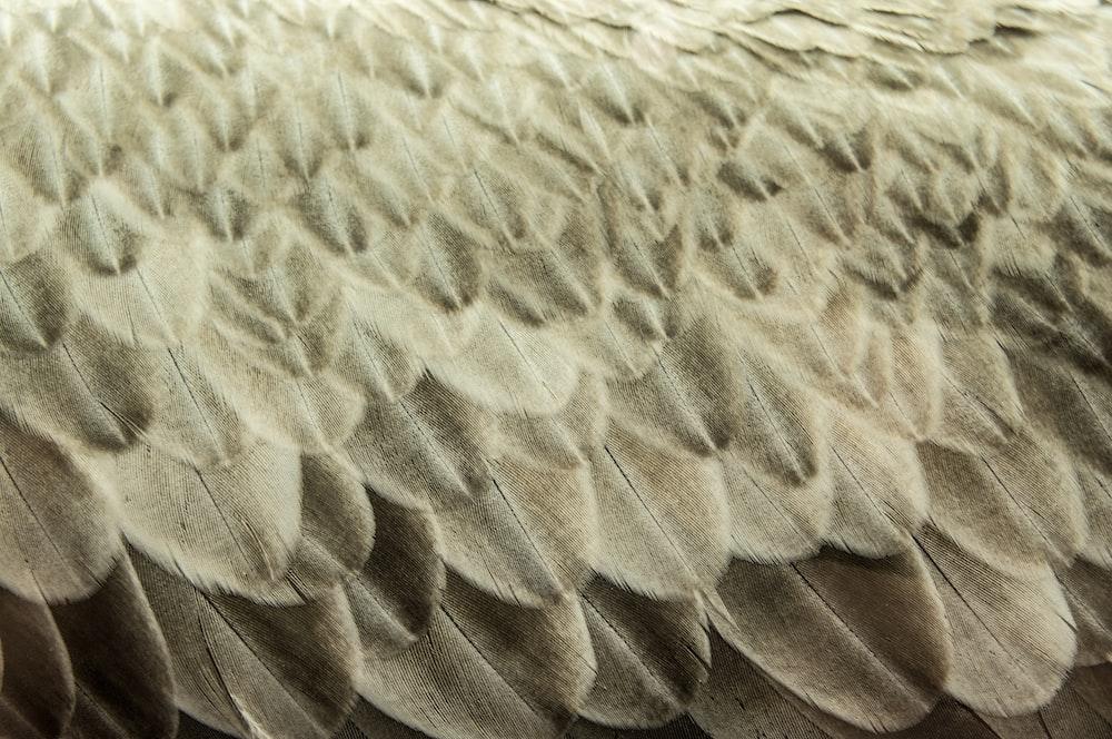 close up photo of gray cloth