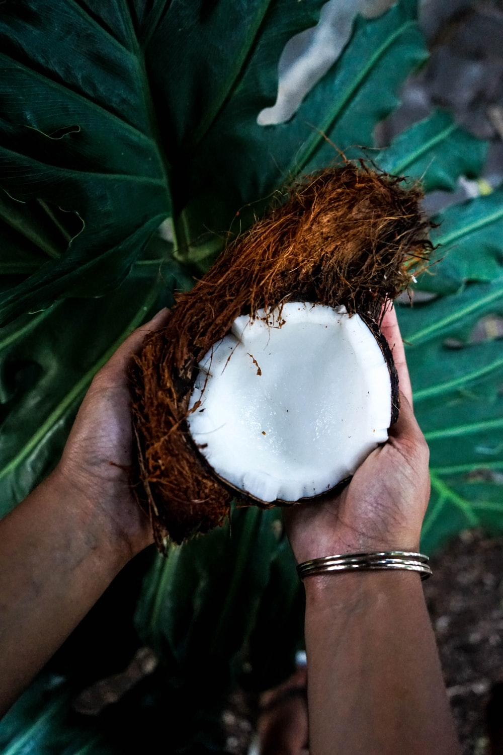 person holding cracked coconut