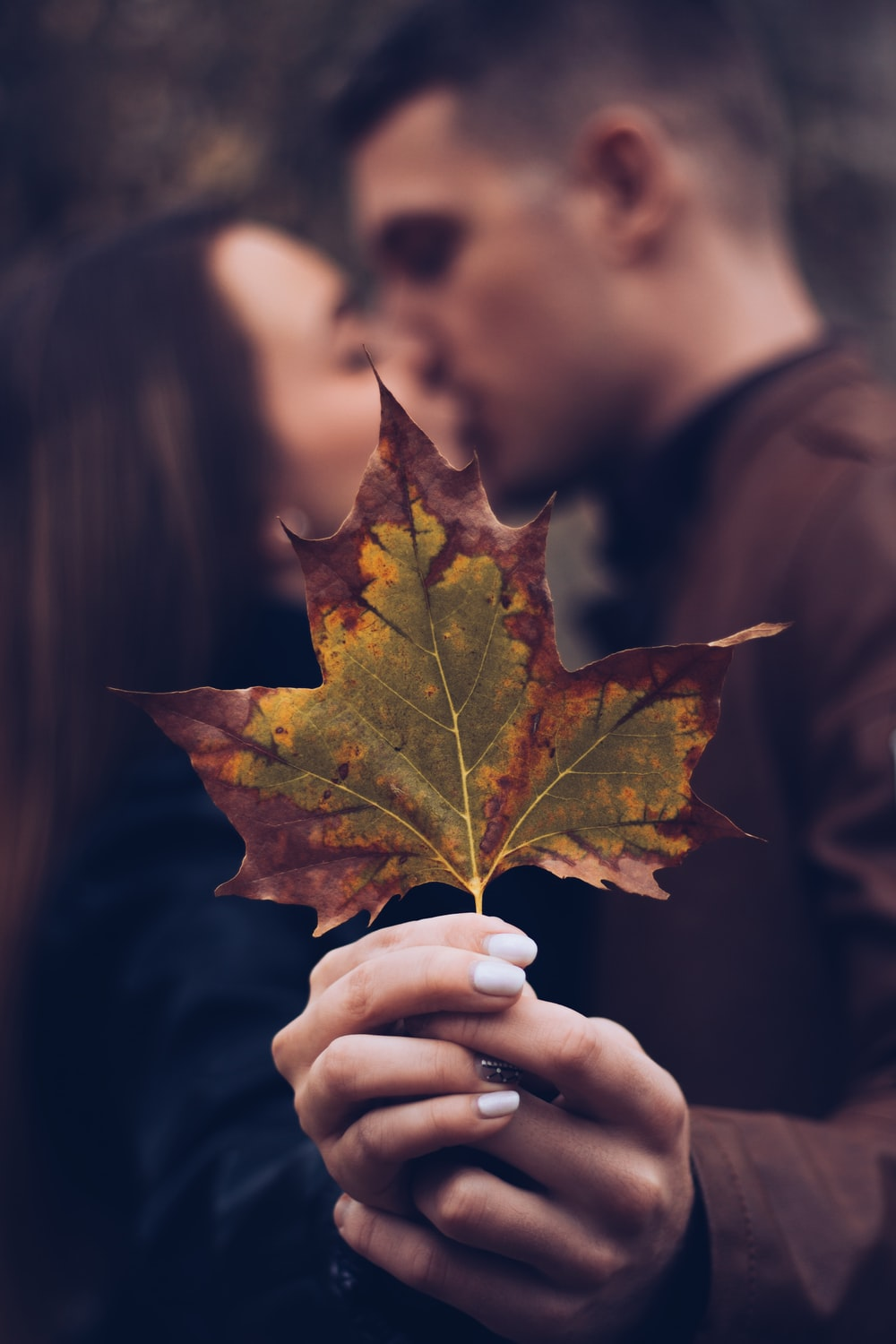 man and woman holding leaf while kissing