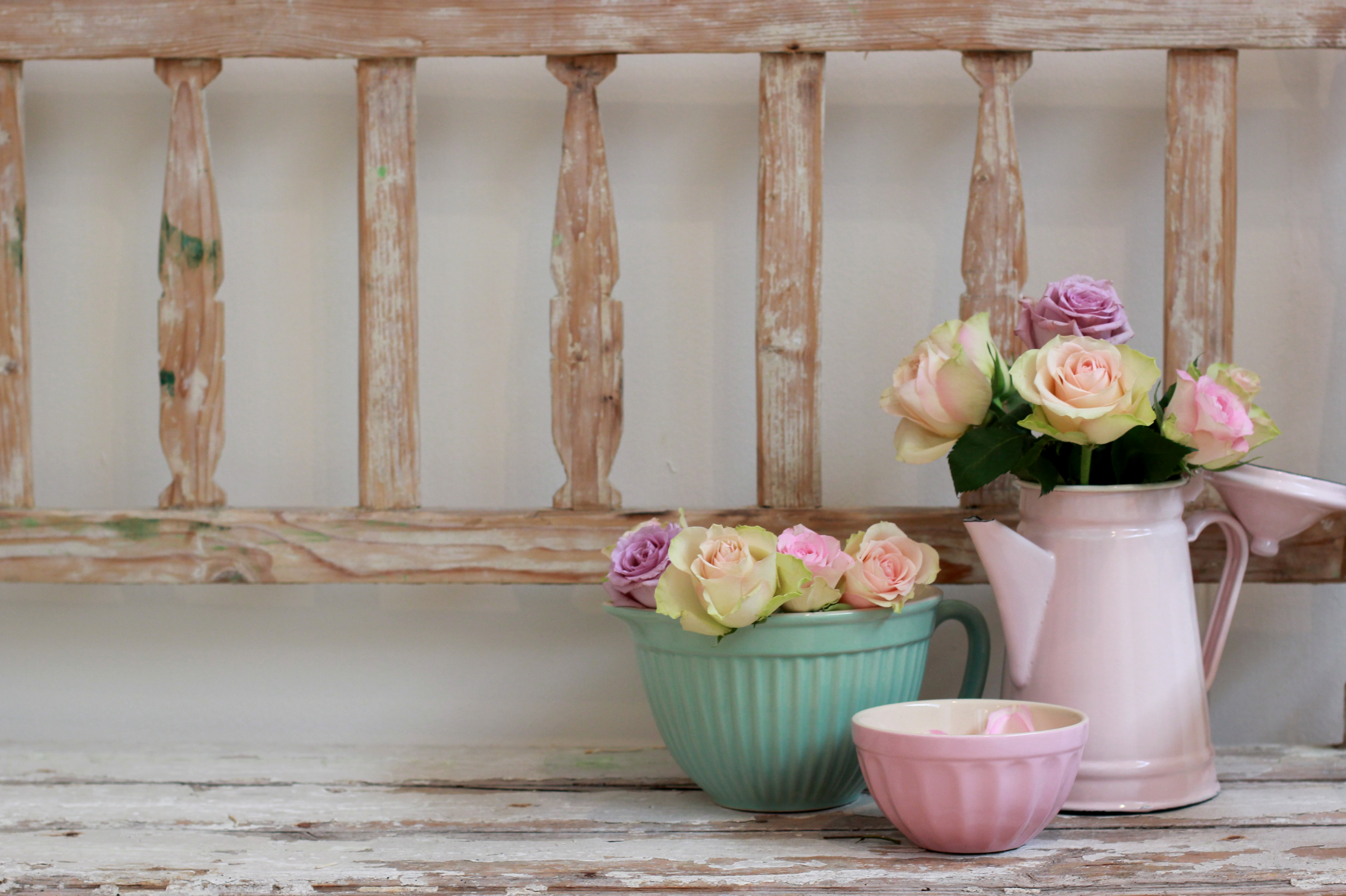 photo of petaled flowers with vase and watering can