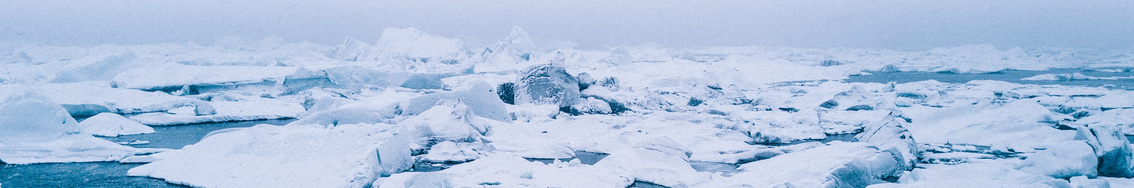 Gazprom's O&G exploration activities are contributing marine ecosystem's destruction in the Arctic