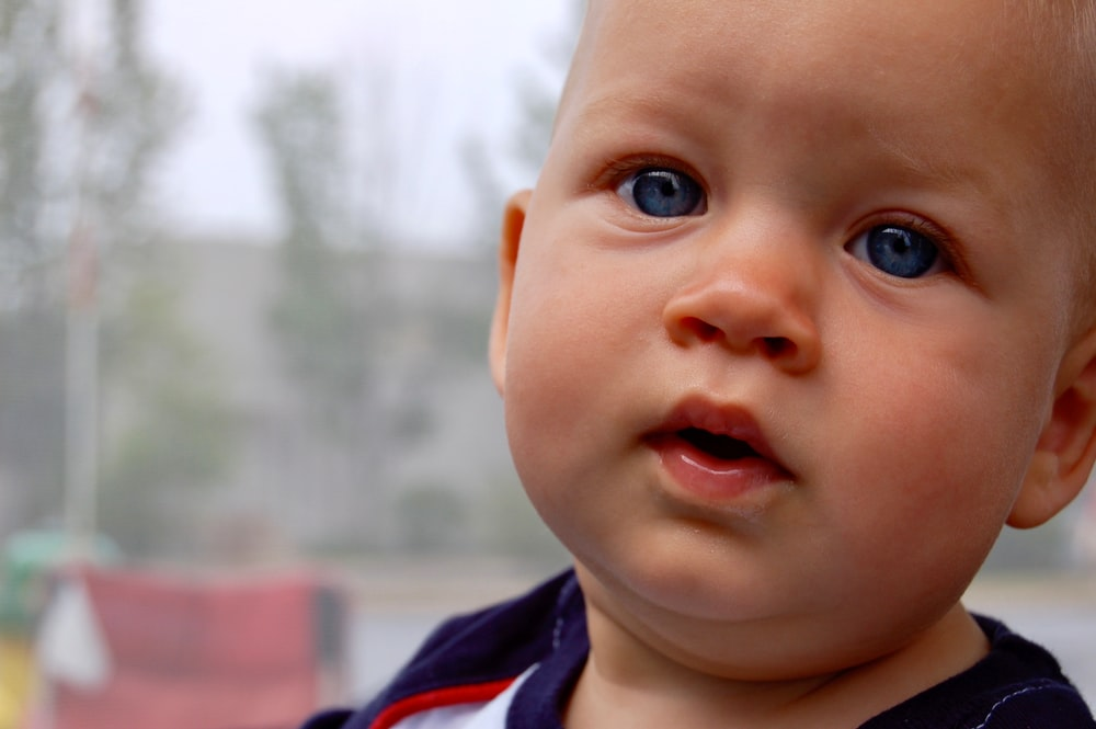 500 baby boy pictures hd download free images on unsplash