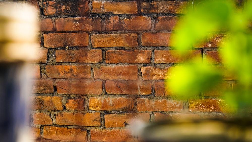 tilt-shift photography of brown brick wall