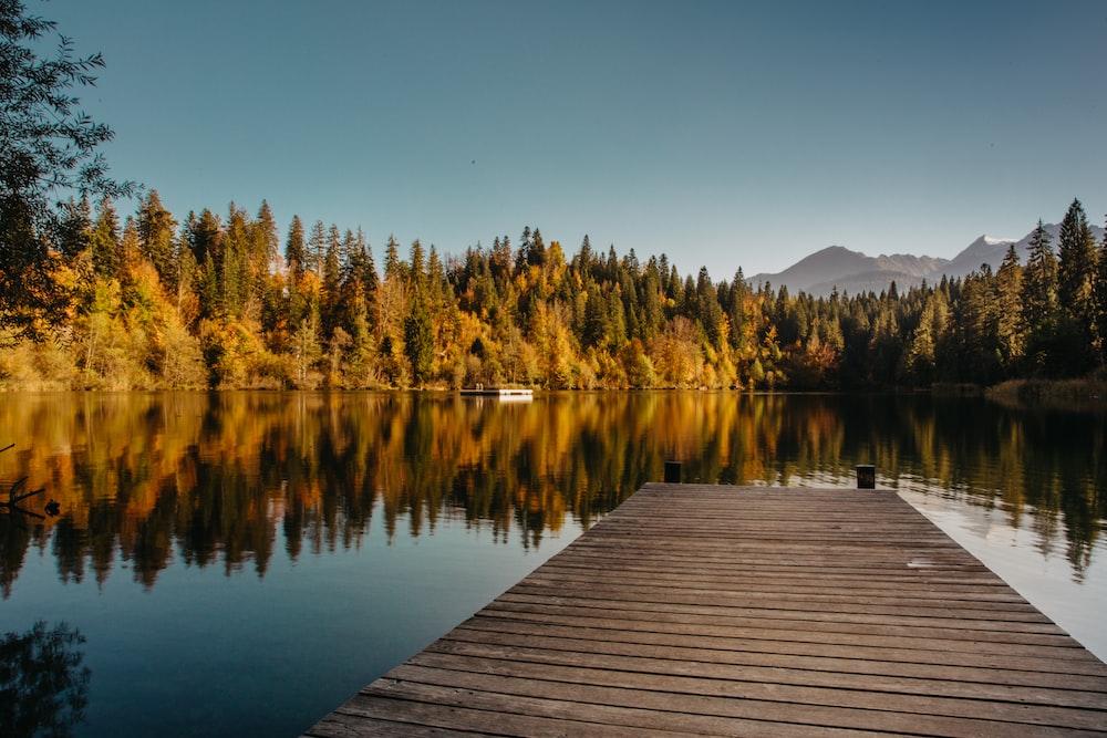 wooden dock over body of water
